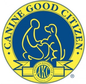 akc-canine-good-citizen