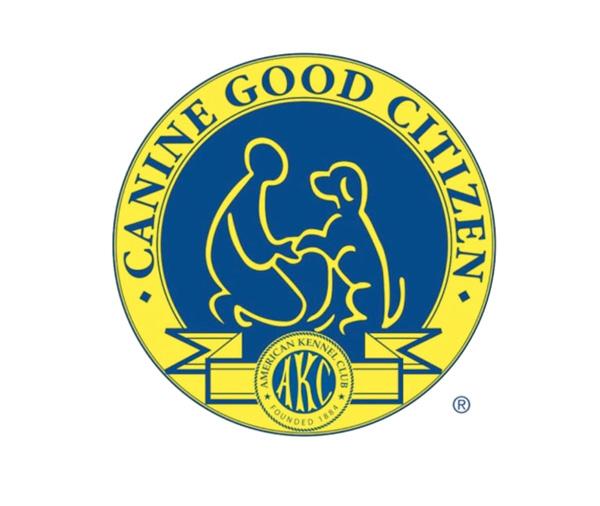 canine-good-citizen-4column